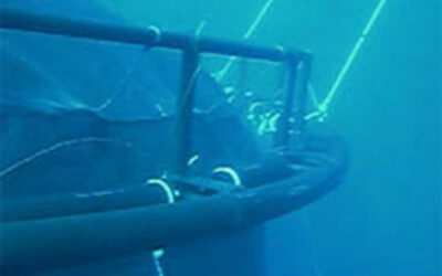 Cages submersibles